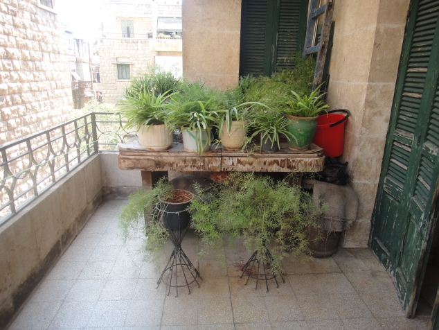 The side balcony with all the ferns and the plants